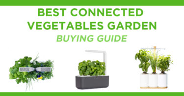 The best smart home gardens in Canada in 2021: our comparative guide